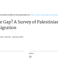 filling-the-gap?-a-survey-of-palestinian