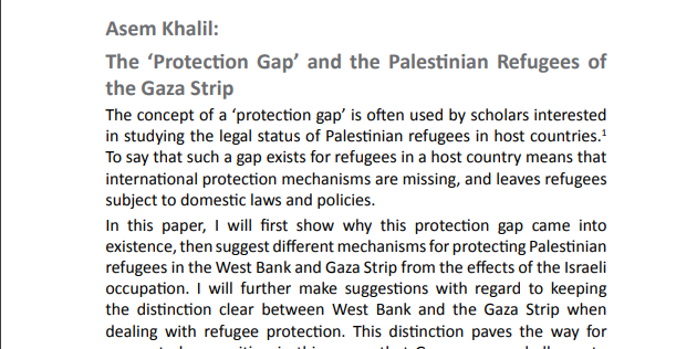 the-'protection-gap'-and-the-palestinian